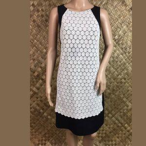 Adrianna Papell Sz 6 Black and White Sleeveless